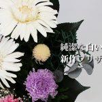純潔な白のガーベラが主役の新作プリザーブド仏花