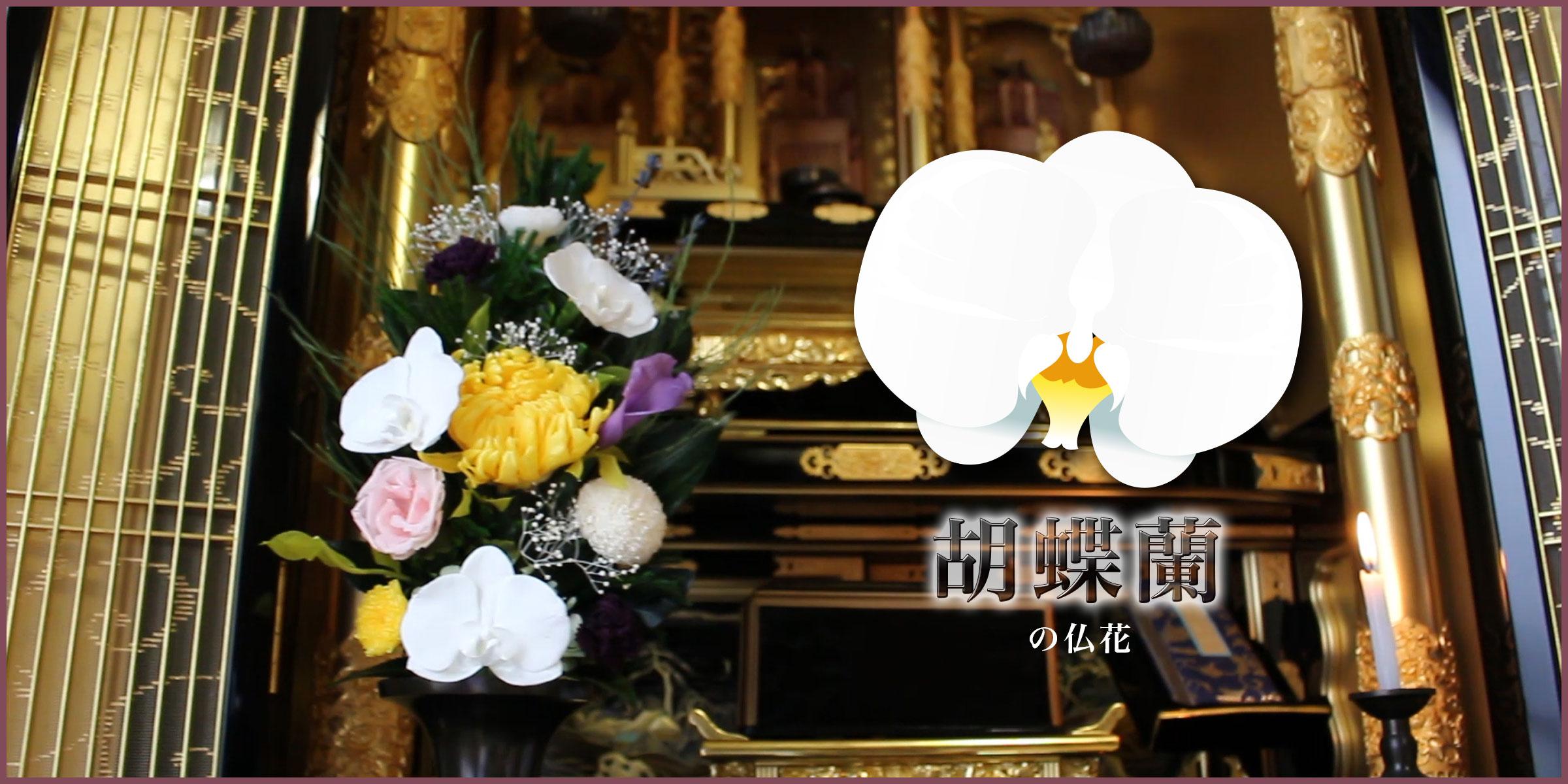 胡蝶蘭のプリザーブド仏花PSYH-0216